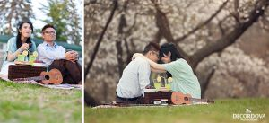 09-engagement-picnic-sakura-high-park-photos.jpg